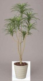 光触媒 人工観葉植物 光の楽園 人工観葉植物ユッカ1.6m光触媒加工送料無料フェイクグリーンユッカ1.6代引き不可