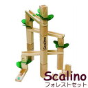 【★入荷時期未定】スカリーノ(scalino)フォレストセット