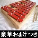 ゾノア社SONOR 二段メタルフォン NG30 【木のおもちゃ 楽器 鉄琴 木製 木製玩具 ゾノア メタルフォン】
