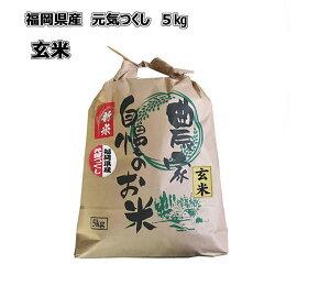 令和元年産 新米 福岡県産 元気つくし 玄米 5kg 農家直送 送料無料