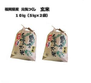 令和元年産 新米 福岡県産 元気つくし 玄米 10kg (5kg×2袋) 農家直送 送料無料