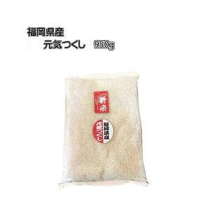 予約 新米 ポイント消化 令和3年産 福岡県産 元気つくし 約 1kg (内容量: 950g) 農家直送 送料無料 10月下旬発送予定