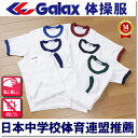 Picturecoolshirts1