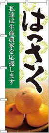 のぼり旗 果物 はっさく 写真 No.21984