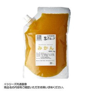 かき氷生シロップ みかん 業務用 1kg
