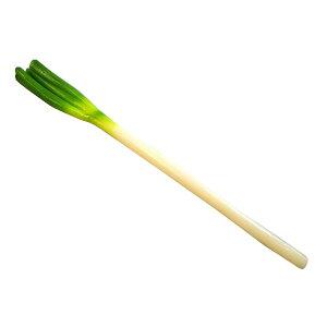 日本職人が作る 食品サンプル 長ネギ IP-365ねぎ 野菜 リアル