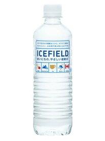 ICEFIELD(アイスフィールド) カナダの天然氷河水 ミネラルウォーター 500ml×24本 軟水 保存 常備 災害 備蓄
