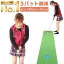 【圧倒的な高評価レビュー4.5点!】 パターマット 3m Danact ( 長さ3m / 横幅45cm ) ゴルフ 練習 ゴルフ練習用品 ゴ…