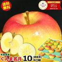 【予約】送料無料 超希少!ぐんま名月 青森 りんご 家庭用 10キロ箱りんご 訳あり 10kg箱 送料無料旬なもぎたてシリー…