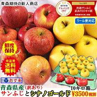 青森県サンふじ10キロ箱りんご10kg訳あり送料無料