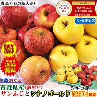 青森りんご送料無料サンふじ5キロ箱
