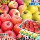復刻【クール便送料込!!】CA貯蔵で鮮度抜群♪青森 ふじとミックスりんご訳あり 10キロ箱 お楽しみりんご送料一部地域除くリンゴ 訳あり…