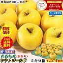 りんご 5kg 青森りんご 5キロ箱 家庭用 訳あり【クール便対応】あす楽青森 シナノゴールド 5kg箱ご家庭用 訳ありりん…