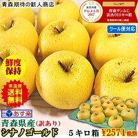 青森県シナノ5キロ箱りんご送料無料