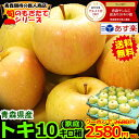 クーポンで2580円!出荷中【送料無料】青森 りんご 家庭用 トキ 10キロ箱りんご 訳あり 10kg箱 送料無料旬なもぎたて…