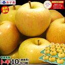 あす楽【送料無料】青森 りんごトキ 10キロ箱ご家庭用 旬のもぎたてシリーズりんご ご家庭用訳あり 10kg箱青森 林檎 1…