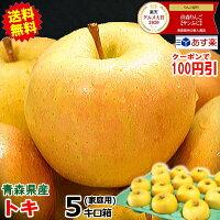 青森りんごトキ5キロ箱送料無料
