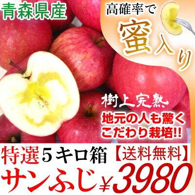 【送料無料】青森 りんご サンふじ 5キロ箱 20玉【贈答用 りんご サンふじ 5kg箱】一度食べたら忘れられない…。そんなサンふじです食べてわかるこの違い!こだわりサンふじ青森 サンふじ りんご リンゴ 約5kg