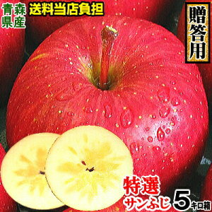 りんご 蜜入り 今なら高確率【送料無料】りんご 贈答用 送料無料 青森 リンゴ サンふじ 5キロ箱 18玉〜20玉【贈答用 りんご サンふじ 5kg箱】一度食べたら忘れられない 樹上完熟食べてわかる