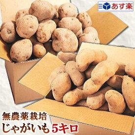 じゃがいも 送料無料 5kg AB品混載岩手県軽米町産 無農薬栽培 越冬じゃがいも 5キロ男爵 メークイン 品種が選べるジャガイモ!じゃがいも 種芋ではありませんちょっぴり規格外 お得な訳ありじゃがいも 送料無料