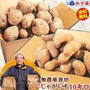 じゃがいも 送料無料 10kg男爵 メークイン 品種が選べるジャガイモ岩手県軽米町産 無農薬栽培 越冬じゃがいも 10キロ…