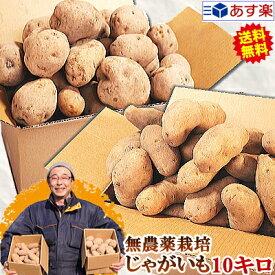 じゃがいも 送料無料 10kg男爵 メークイン 品種が選べるジャガイモ岩手県軽米町産 無農薬栽培 越冬じゃがいも 10キロじゃがいも 種芋ではありませんちょっぴり規格外 A品B品混載 お得な訳ありじゃがいも 常温送料無料