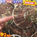 【送料無料】青森 活ほたて 殻付き 中2キロ(約12枚〜17枚)青森 ホタテ 養殖奇跡の海『むつ湾』からホタテ漁師が贈る…