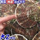 【送料無料】青森 活ほたて 殻付き 大2キロ(約10枚前後)青森 ホタテ 養殖青森『特選』活ほたて 奇跡の海『むつ湾』…