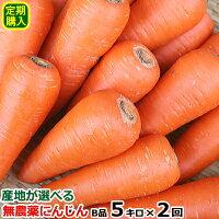 【定期購入】産地が選べる無農薬にんじんB品5キロ×2回(計10キロ)