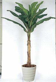 【送料無料・ポイント10倍】《アートグリーン》《人工観葉植物》光触媒 光の楽園 バナナ2.0
