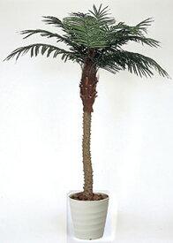 【送料無料・ポイント10倍】《アートグリーン》《人工観葉植物》光触媒 光の楽園 フェニックス2.1