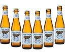 ★限定SALE★(送料無料)ベルギービール ブロンシュ ド ブルージュ330ml×6本送料無料 輸入ビール ベルギービール (…