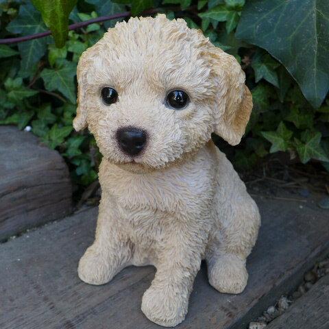 犬の置物 ミックス犬 ラブラドゥードル いぬ イヌ 動物 N2627 オーナメント ガーデン オブジェ 庭 雑貨 ガーデニング ガーデンマスコット