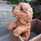 犬の置物プードルハンギングドッグ6142Hいぬイヌ動物オーナメントガーデンオブジェ庭雑貨ガーデニングインテリアマスコットリアル陶器ディスプレィ