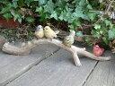 森の仲間たち バード4羽セット 小鳥 とり トリ N11177 オーナメント ガーデン オブジェ 4羽の話B ガーデニング 置物 …