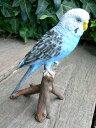 小鳥の置物 インコの置物 青 12143N とり トリ オブジェ 動物 オーナメント ガーデン 庭 マスコット 雑貨 置物 小物 リアル ディスプレィ
