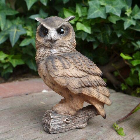 フクロウの置物 茶 ふくろう N12878 鳥 とり 動物 オーナメント オブジェ ガーデン ガーデニング 置物 縁起物 雑貨 ナチュラル リアル ディスプレィ