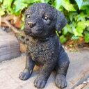犬の置物 ラブラドールレトリバー子犬 ブラック 38QY いぬ イヌ 動物 オーナメント ガーデン インテリア 雑…
