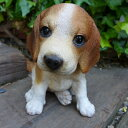 犬の置物 ビーグル いぬ イヌ 動物 T14062 オーナメント ガーデン オブジェ 庭 雑貨 ガーデニング インテリア 雑貨 マスコット