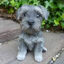 犬の置物 シュナウザー いぬ イヌ 動物 T14068 オーナメント ガーデン オブジェ 庭 雑貨 ガーデニング インテリア 陶器 マスコット ディスプレィ