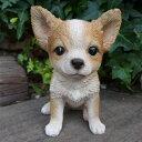 犬の置物 チワワ ちわわ 1230QYL オーナメント ガーデン オブジェ 庭 雑貨 ガーデニング インテリア マスコット リアル 陶器 いぬ イヌ 動物