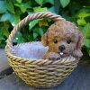 犬の置物プードルバスケットN12981いぬイヌ動物オーナメントガーデンオブジェ庭雑貨ガーデニングインテリアマスコットリアルディスプレィ子犬ポットプランター鉢