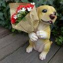 母の日 ラブラドール カーネーションプレゼントドッグ ラッピング付 カーネーション 2101H いぬ イヌ 動物 犬の置物 オーナメント ガーデン 花束 ギフト