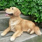 犬の置物ラブラドールレトリバーN963いぬイヌ動物オーナメントガーデンインテリア雑貨置物庭ガーデンマスコット