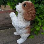犬の置物キャバリアのお願い102QYいぬイヌ動物オーナメントガーデンインテリア雑貨置物庭ガーデンマスコット雑貨小物ディスプレィ陶器リアル