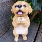犬の置物ラブラドールのお願い104QYいぬイヌ動物オーナメントガーデンインテリア雑貨置物庭ガーデンマスコット雑貨小物ディスプレィ陶器リアル