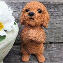 犬の置物 プードルのお願いアプリコット 7359HT いぬ イヌ 動物 オーナメント ガーデン インテリア 雑貨 置物 庭 ガー…