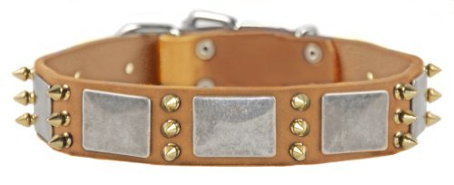 "Dean and Tyler ""DEVILISH DELLA"" Dog Collar with Nickel Plate and Brass Spikes - Tan - Size 28-Inch"