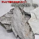 【卸し売り価格】バドガシュタイン鉱石 細かい破片約500g売り ・健康・天然石・テラヘルツ・美容・健康・ラジウム・ダ…