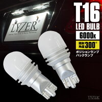 LD-0039LEDバルブ300°照射T168000K2個1セット